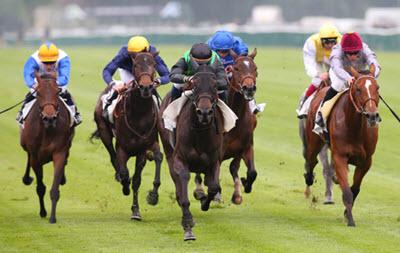 Flat racing - Horse racing in Delaware